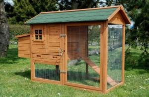 cage a poule